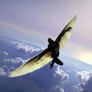 """Sometimes you NEED a kick in the """"BUT"""", to SOAR"""