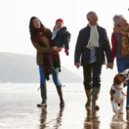 5 Powerful Steps to Kick Holiday Stress, Highly Sensitives